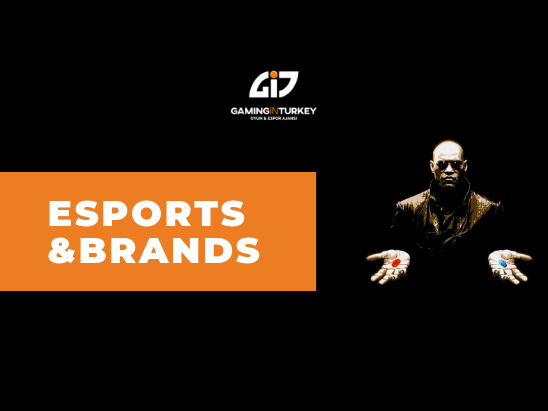 Esports And Brands